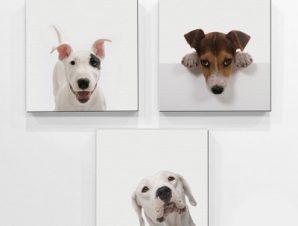 Σκυλάκια Παιδικά Mini Set καμβάς 25 x 25 εκ.